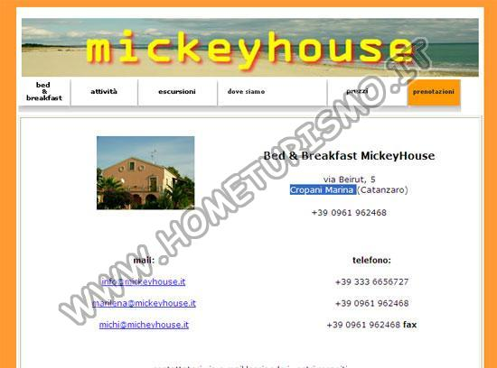B&B Mickey House